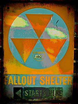 Kevin D Davis - Fallout Shelter