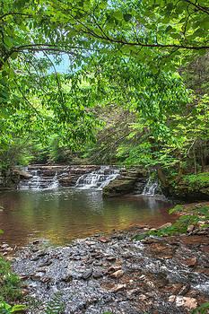 Mary Almond - Falls at Camp Creek