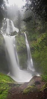Falls Creek Falls by David  Forster