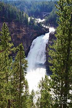 Falls Of Yellowstone by Kathleen Struckle