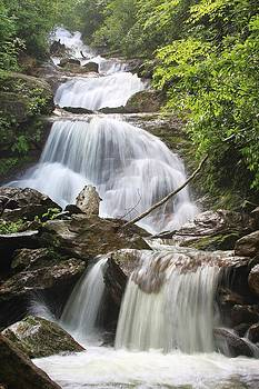 Falls on the Middle Prong North Carolina by Mountains to the Sea Photo