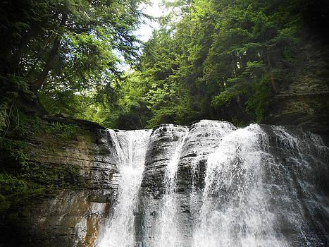 Falls View by Jonathan Westfall