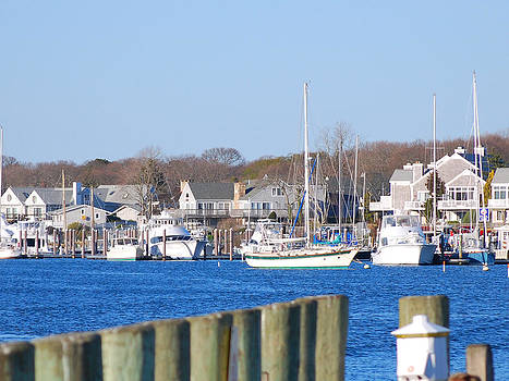Falmouth Harbor by Lorena Mahoney