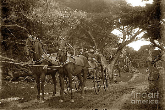 California Views Mr Pat Hathaway Archives - Family out carriage ride on the 17 Mile Drive in Pebble Beach Circa 1895