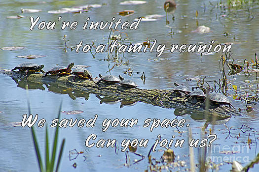 Mother Nature - Family Reunion Invitation Greeting - Turtles