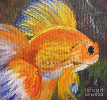 Fancy Goldfish by Barbara Haviland