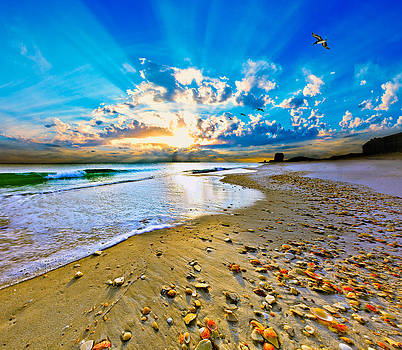 Fantasy Art-Birds Flying into Sunset Over Shell Covered Beach by Eszra