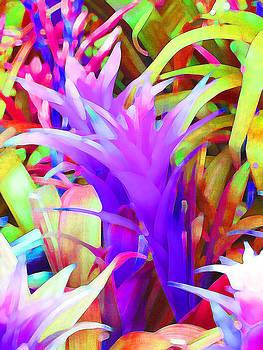 Fantasy Bromeliad Abstract by Margaret Saheed