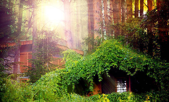 Fantasy Forest by Svetoslav Sokolov