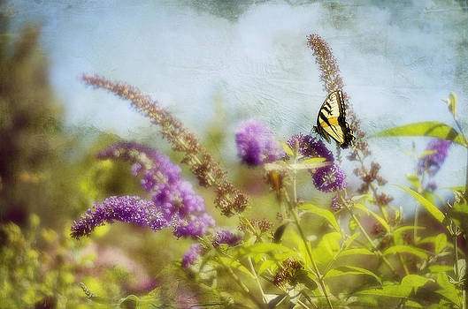 Fantasy Garden by Kathy Jennings