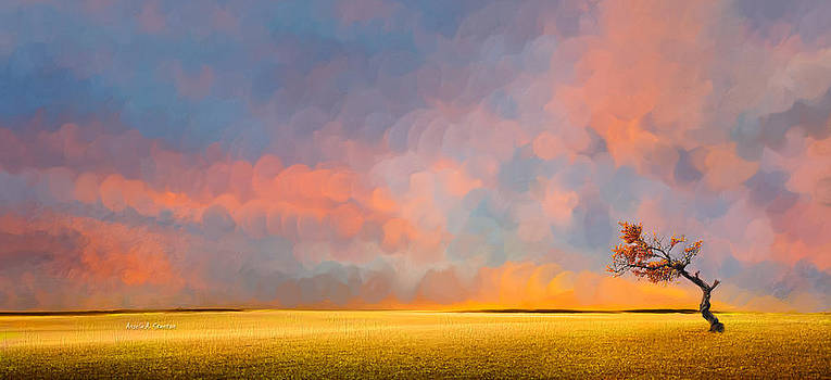 Far Away Sunset with Old Tree by Angela A Stanton