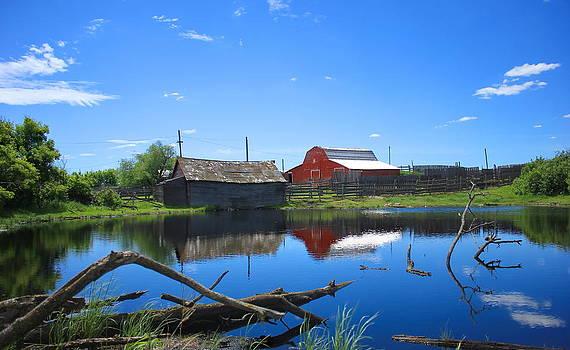 Farm Buildings and Pond. by Jim Sauchyn