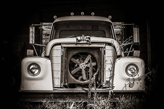 Farm Fresh  by Off The Beaten Path Photography - Andrew Alexander