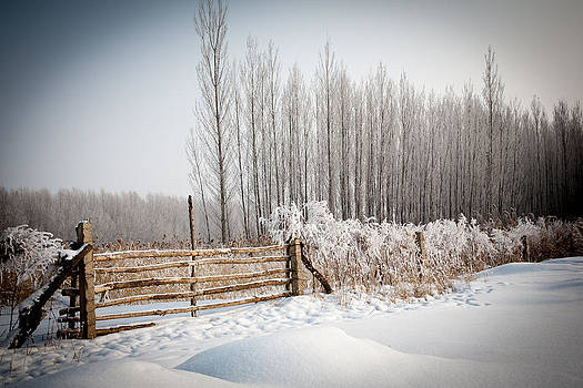 Farm Gate by Stephanus Le Roux