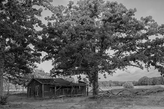 Farm House by Bryan Davis