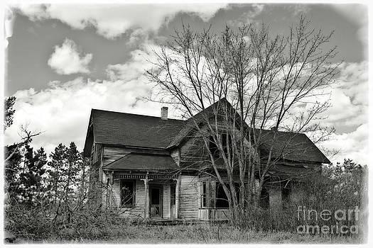 Ms Judi - Farm House Ruins