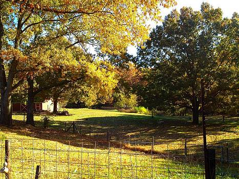 Farm in Autum  by Michael  Siers