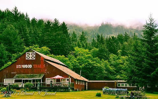 David Junod - Farm Life Nor Cal.