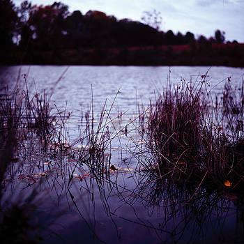 Farm Pond At Dusk by Ian Wilson