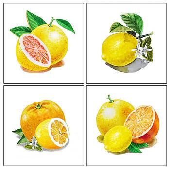 Irina Sztukowski - Farmers Market Gifts Vitamin C