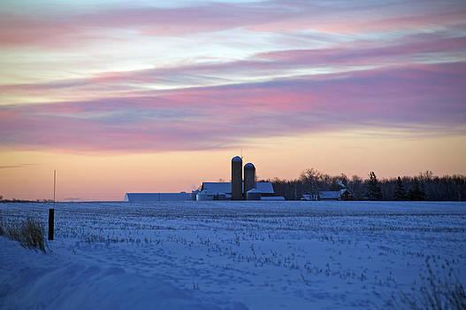 Elaine Mikkelstrup - Farmers Sunrise