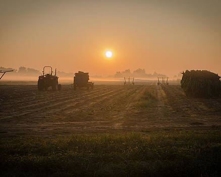 Farmer's Sunrise by Neil Todd