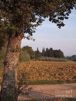 Alessandra Di Noto - farming in Tuscany