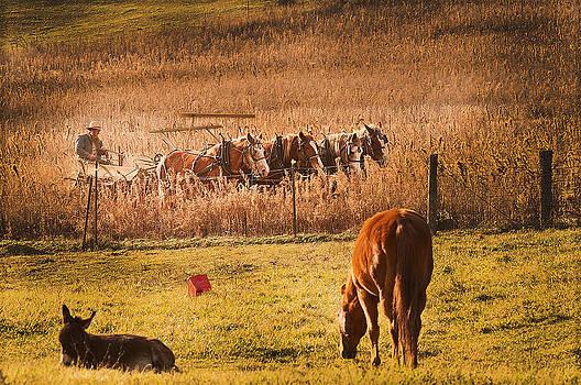 Randall Branham - Farming  Modes of Transportation
