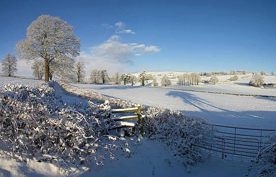 Farmland in Devon in mid winter by Pete Hemington