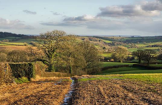 Farmland in Mid Devon by Pete Hemington