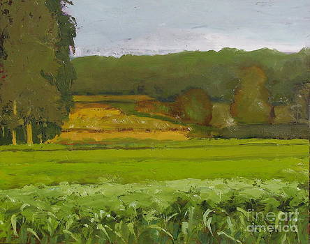 Farmland scape by Candi Edmondson