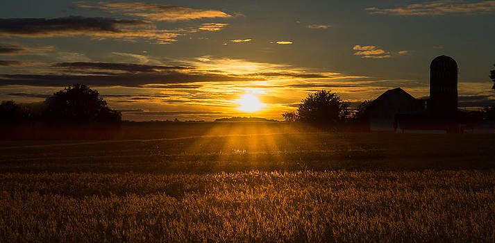 Melinda Martin - Farmland Sunset