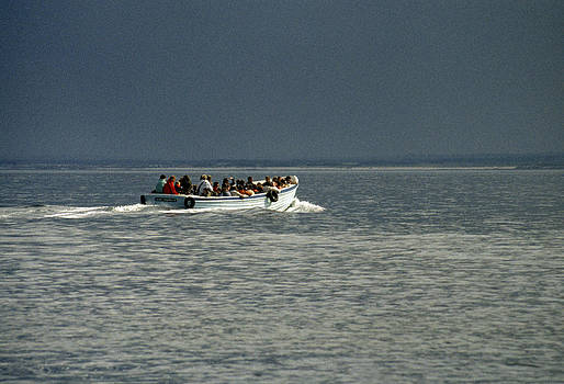 Farne Islands Boat trip UK 1980s by David Davies
