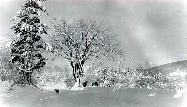 Farrington Hollow Winter Scene by Kathleen Palermo