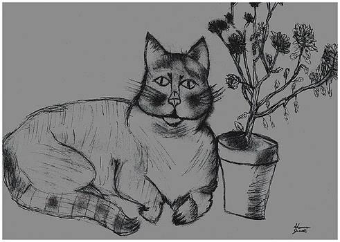 Fat Cat  by Shaunna Juuti