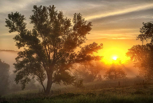 Father's day Sunrise by Bruce Morrison