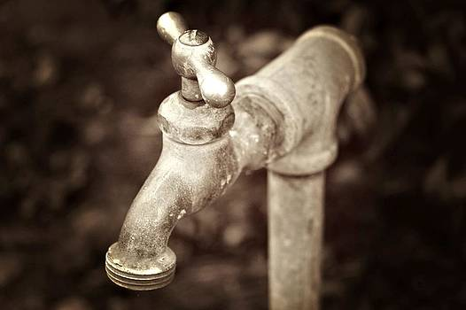 Faucet in Fall by Cathie Tyler