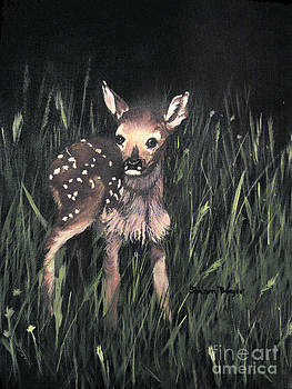 Fawn by Sharon Burger