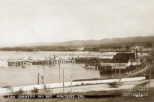 California Views Mr Pat Hathaway Archives - F. E. Booth cannery and Fishermans Wharf looking East from the lower Presidio 1910