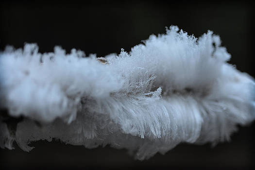 Ronda Broatch - Feather Ice