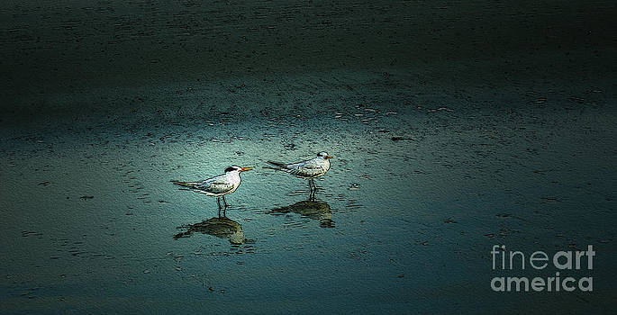 Feathered Friends by Jerry Hart