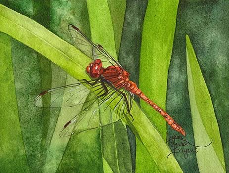 February Dragonfly by Lynne Hurd Bryant