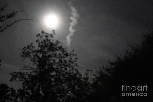 February Full Moon by Delaine Miller Sweat