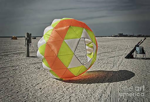 February on Tampa Bay Beach by Barbara Youngleson