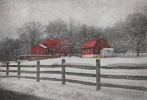 February Snow At Buffalo Hollow Farm by Pat Abbott