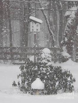 Judy Via-Wolff - February Snowstorm   NY
