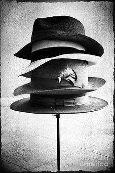 Fedoras by Janis Lee Colon