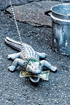 Kathleen K Parker - Feed the Gator - NOLA