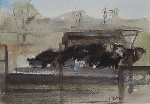 Feeding Cows by Lynne Bolwell