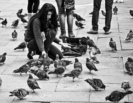 Feeding The Pigeons by Craig Brown